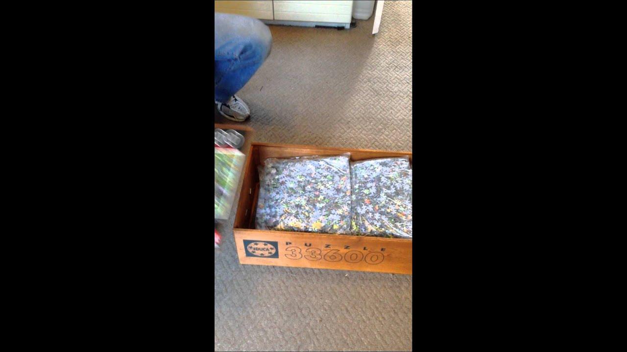 Puzzle 33600 pieces la vie sauvage